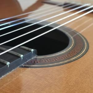 آموزش ویدیویی ساز گیتار