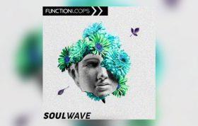 دانلود مجموعه لوپ Function Loops Soulwave