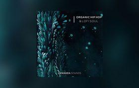دانلود مجموعه لوپ و سمپل Laniakea Sounds Organic Hip Hop And Lofi Soul