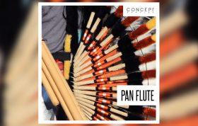 دانلود مجموعه سمپل Concept Samples Pan Flute