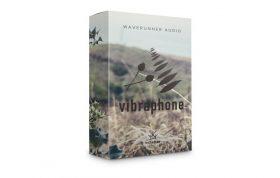دانلود بانک صدای کانتکت Waverunner Audio Rosehip Vibes