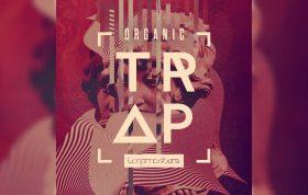 دانلود مجموعه سمپل و لوپ Loopmasters Organic Trap