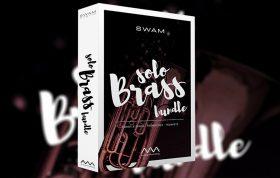 وی اس تی سازهای بادی برنجی Audio Modeling SWAM Solo Brass Bundle