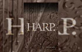 بانک صدای کانتکت Spitfire Audio Skaila Kanga Harp